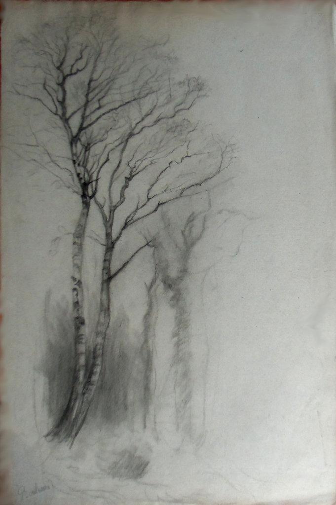 105-1578.JPG