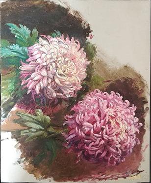 chrysantemes.jpg