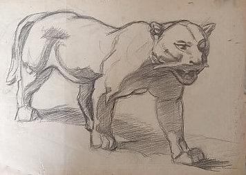 felin-dessin.jpg